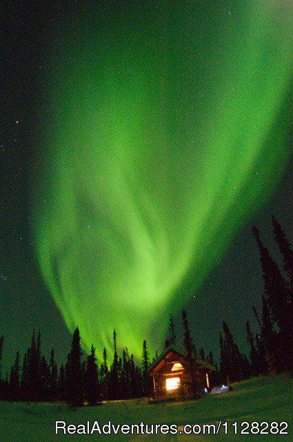 The Aurora Borealis - Alaska Brooks Range Dog Sledding Tours
