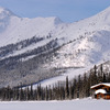 Alaska Brooks Range Dog Sledding Tours