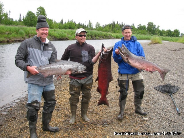 Three nice kings in ten minutes (last day of the season) - Deshka Wilderness Lodge