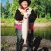 Big Silver Salmon