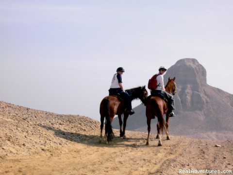 Explore Egypt on Horseback