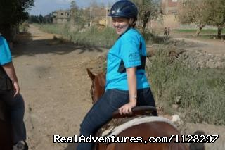 Professional Horses for Relaxing Riding - Explore Egypt on Horseback