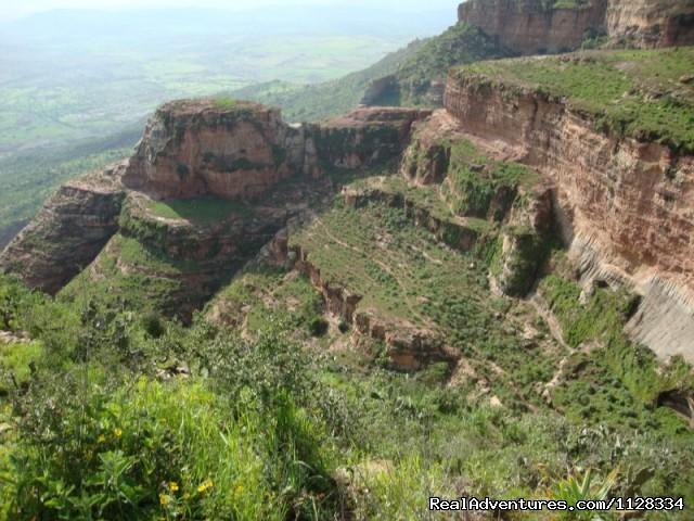 Ethiopia tour operator Pharez Ethiopia tour  (#12 of 26) - Ethiopia tour, Lalibela Gonder Omo Dallo Ertale