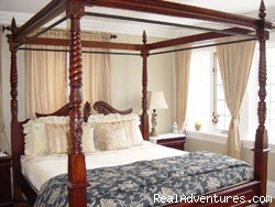 Garden View - Boutique style Bed and Breakfast/ High Park