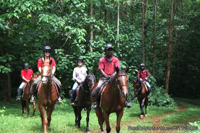 Riding in the forest - Nile Horseback Safaris by the Nile in Uganda
