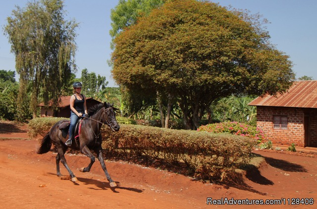 Fast or slow pace your choice - Nile Horseback Safaris by the Nile in Uganda