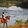 Nile Horseback Safaris by the Nile in Uganda Eastern, Uganda Horseback Riding