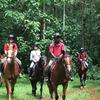 Nile Horseback Safaris by the Nile in Uganda