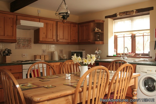- Self Catering Holiday Devon