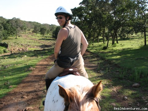 going into the forest, or going out?? - Horse riding Holiday in Mexico
