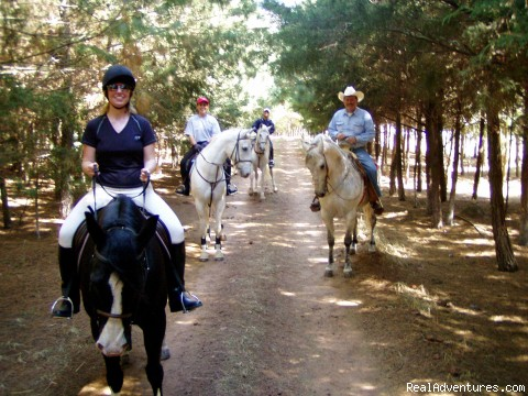 Photo #3 - Horse riding Holiday in Mexico