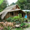 Rainforest Holiday Vacation Rentals Rosalie, Dominica