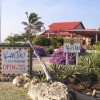 Windsurf Bonaire and Stay at KonTiki