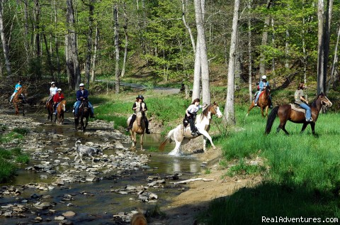 Horseback Riding Adventures Available - Best of the Great Outdoors and Great Indoors