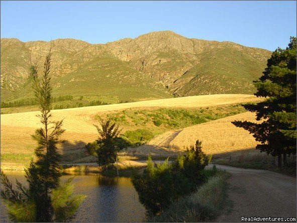 Tulbagh valley | Image #8/16 | Dreamcatcher cottage
