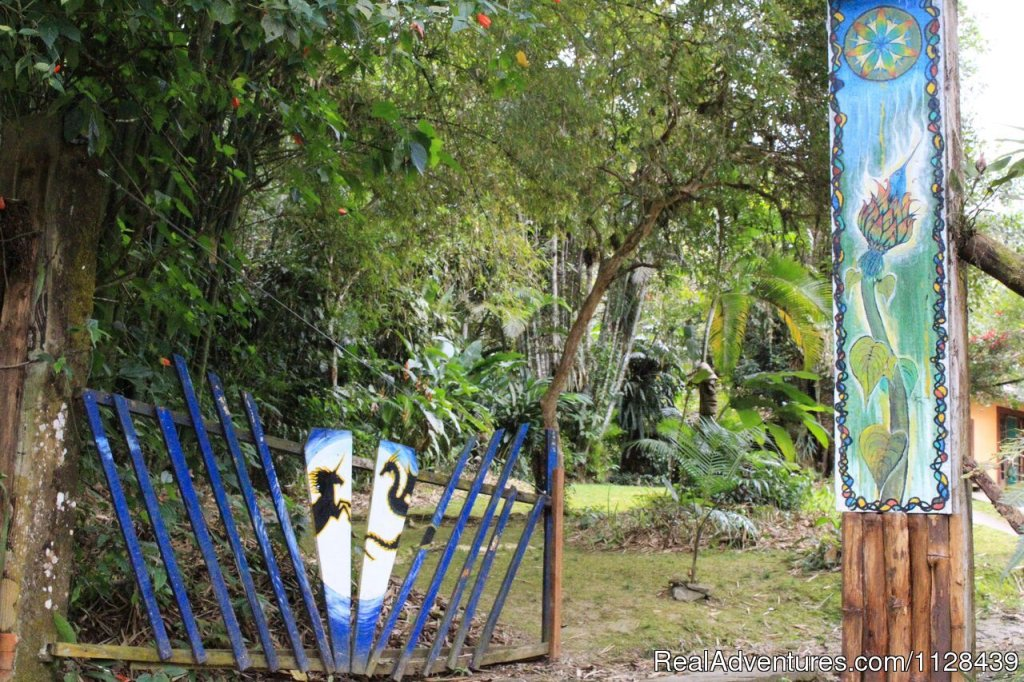 Entrance | Image #2/9 | Enjoy life in the Atlantic Rain Forest