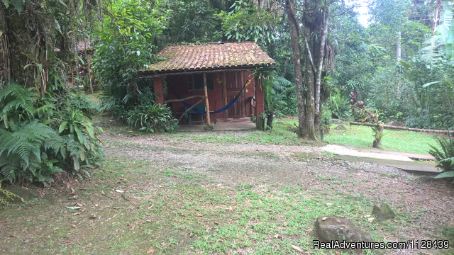 Cabin I - Enjoy life in the Atlantic Rain Forest