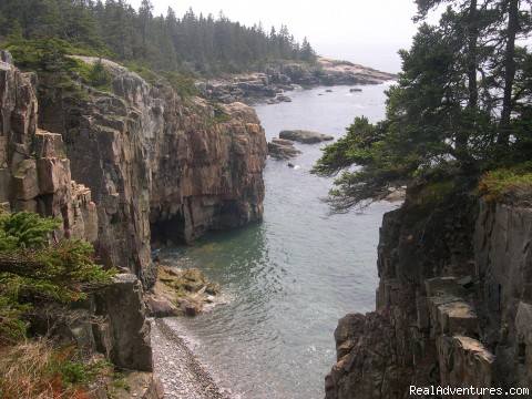 Secret Acadia-Schoodic Peninsula - Acadia Ecotours and Ardea EcoExpeditions