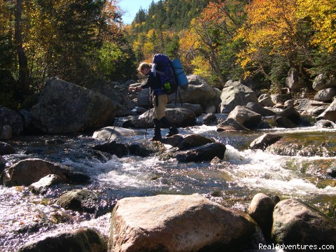 Maine Woods Custom Overnight - Acadia Ecotours and Ardea EcoExpeditions
