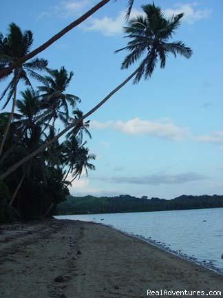 Local beach - Fiji holiday home