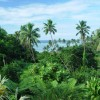 Fiji holiday home
