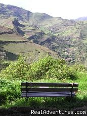 Garden view - Hostal Llullu Llama Ecuador