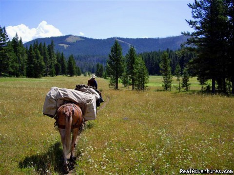 Pack Trips Into Yellowstone and The Lee Metcalf Wilderness - Small Authentic Old West Guest Ranch Experience
