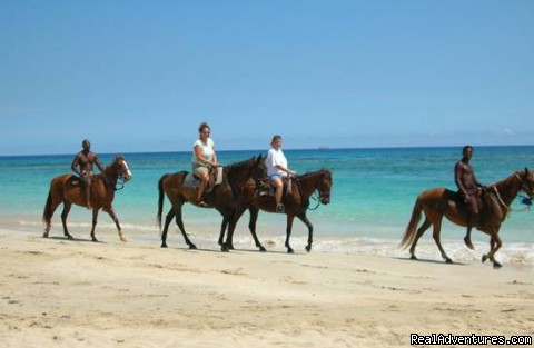 Close To Horse Riding - Affordable  Villa with pool -Runaway Bay Jamaica