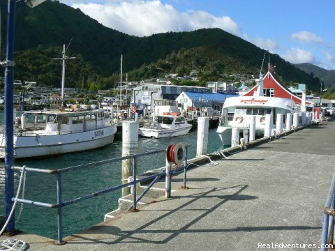 Picton - Christian Holiday Experiences in Godzone