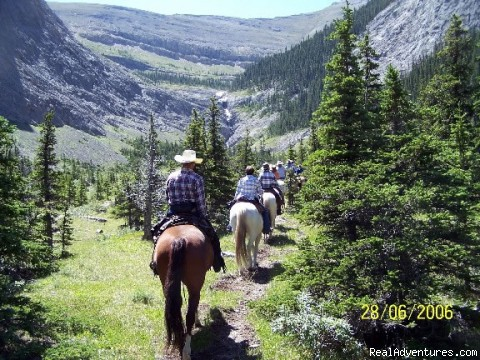- Enrich your life with a Horseback Vacation