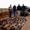 Ducks: Argentina Hunts, Santa Rosa, Argentina