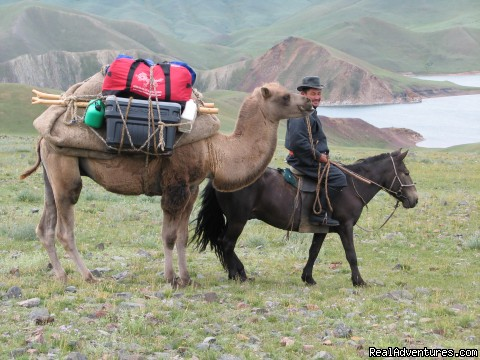 Hiking and Trekking Holiday Vacations in Mongolia: Our guide and pack camel