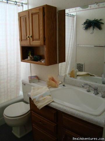 Hall bathroom - Let Us Spoil You at Charlie-Jane's Bed & Breakfast