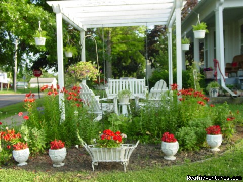 Enjoy sitting in the Pergola - Let Us Spoil You at Charlie-Jane's Bed & Breakfast