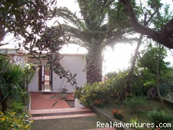Garden - Villa La Palma with beautiful view on Capri