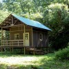 Neat Cabin on 65 acres with a creek