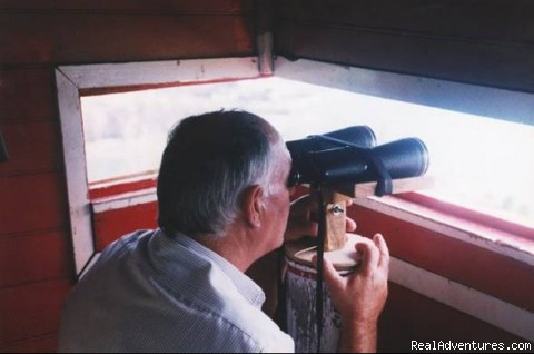 Mr. Alfredo, the last lookout man - Azores A Prime Destination For Whale Watching