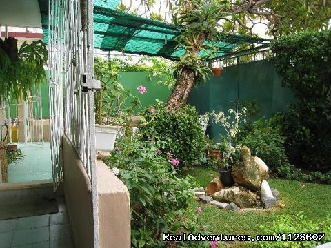 La Casa de Ana B&B garden view | Image #2/10 | La Casa de Ana,  'Home away from Home'