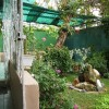 La Casa de Ana B&B garden view