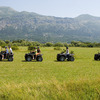 Horseback Riding & ATV Safari in Dubrovnik,Croatia Andrilovec, Croatia Horseback Riding