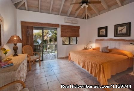 2nd bedroom, also with king bed - Life is Good at Coconut Grove Villa.
