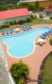 - Relaxing and Romantic escapades at Palm Haven