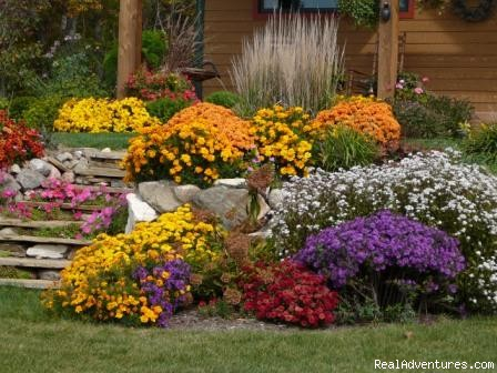 Flower Gardens - Timberpine Lodge Bed & Breakfast
