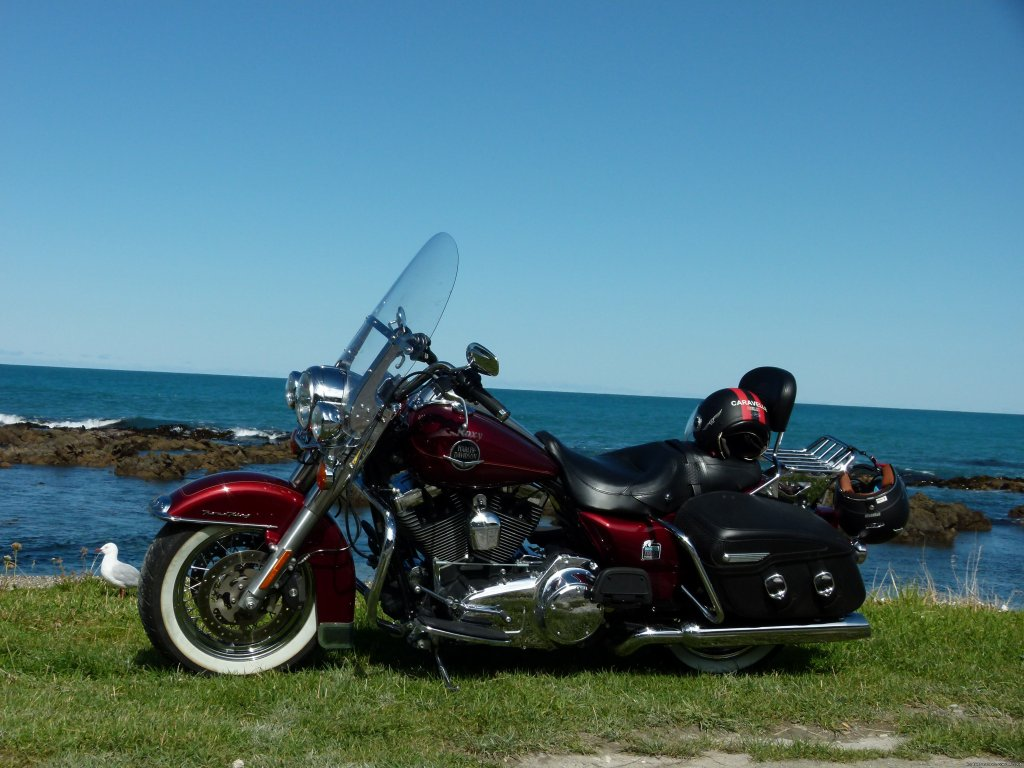 Harley Roadking Classic | Image #2/3 | New Zealand Motorcycle Tours & Hire