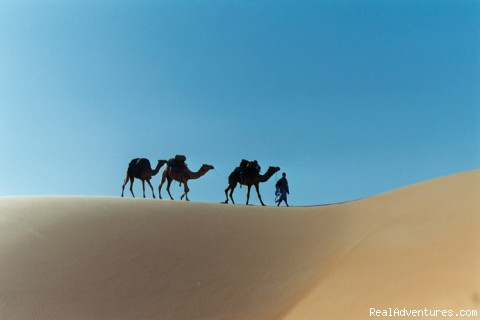 Discover charming desert in Mauritania (#1 of 16) - Desert 4x4 tours in Mauritania