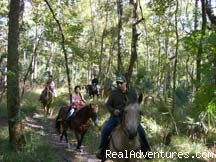 Trail Rides - Deep Creek Stables An incredible riding experience