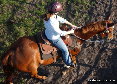 Image #6 of 11 - Deep Creek Stables An incredible riding experience