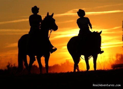Deep Creek Stables An incredible riding experience Pierson, Florida Horseback Riding