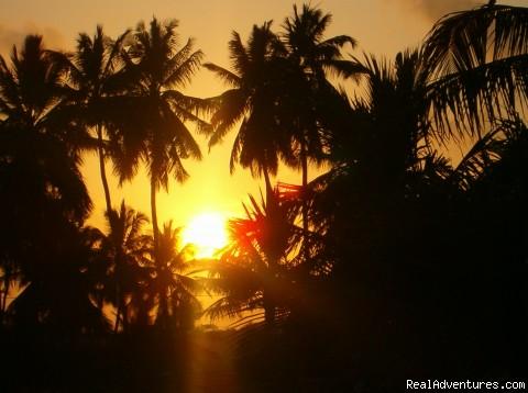 Shehe Bungalows-Jambiani-Zanzibar: sun set