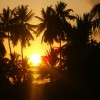 Shehe Bungalows-Jambiani-Zanzibar Zanzibar, Tanzania Hotels & Resorts